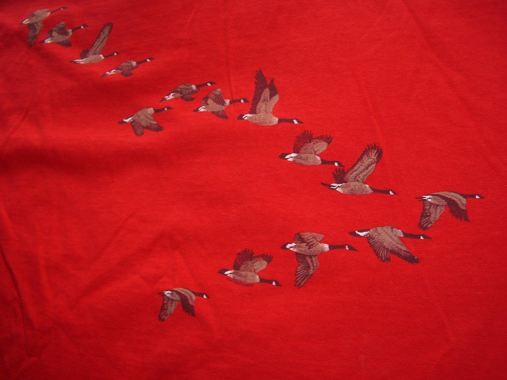 Vintage Flying Geese T-Shirt back close