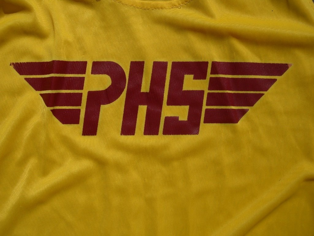 vintage-90s-phs-wings-tank-top-design